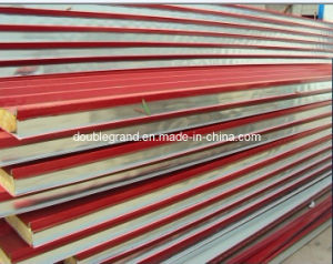 Fire Proof Wall Sanwich Panels (DG9-010) pictures & photos