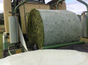 Made in China Silage Inner Barrier Film pictures & photos