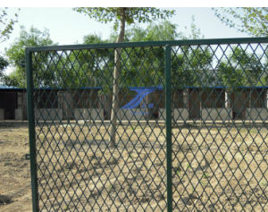 Expanded Fences Used for Playground (TS-L20) pictures & photos