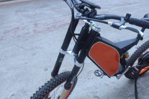 Downhill Electric Bikes 3000W pictures & photos