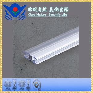 Xc-308xgb1 Bathroom Adhesive Tape pictures & photos