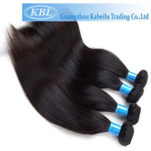 Natural Brazilian Human Hair (KBL-BH-ST) pictures & photos