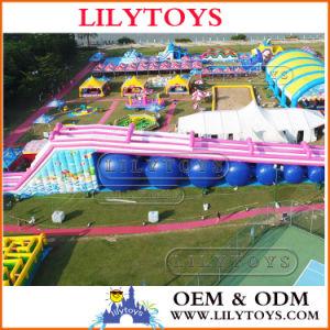 New Design Big Inflatable Slide, Big Inflatable City Slide pictures & photos