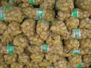 Chinese Fresh Potatoes Origin From Shandong