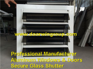 Casement and Swing Type Aluminium Louver Glass Window/Shutter pictures & photos
