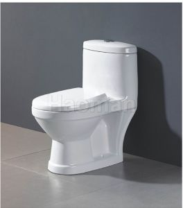 One-Piece Toilet / Children Toilet (HM-2012)
