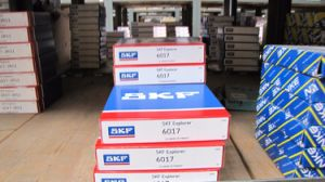 Deep Groove Ball Bearing SKF (61840) pictures & photos