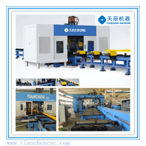 CNC Drilling Facility for H Beam (TSD300/9) Steel Structure pictures & photos