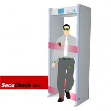 Walk Through Metal Detector Secucheck (CS-DS)