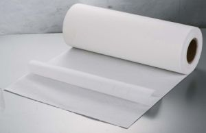 PTFE Membrane with Pet Filter Media (FH11D0334) pictures & photos