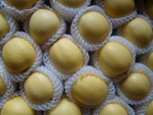 Golden Apple - 5