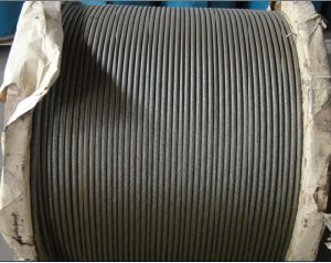 Steel Wire Rope for Crane pictures & photos