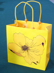 Shopping Bag (HD-SG-001)
