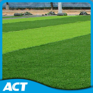 2016 Made in China Hot Standard Football Artificial Grass (SMD60F1) pictures & photos