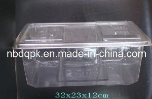Thermoformed Container Disposable Mouse Cage pictures & photos