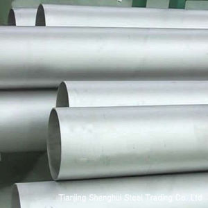 High Competitive of Stainless Steel Tube (317) pictures & photos