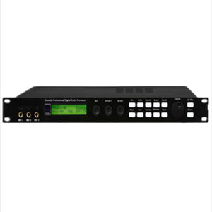 Professional Digital Audio Processor/Digital Processor pictures & photos