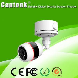 Hot Selling Plastic & Weatherproof IR Camera IP CCTV Camera pictures & photos
