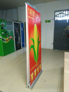 Double Side Pull up Banner Stand pictures & photos