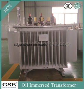 10kv Oil-Immersed Laminated Core Type Fully-Sealed Energy Saving Power Distribution Transformer pictures & photos
