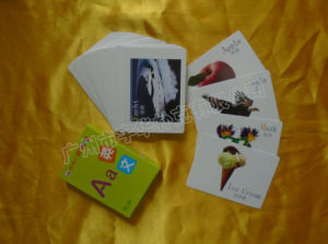 Machines Manufacture Animal Pattern Paper Educational Cards Yh13 pictures & photos