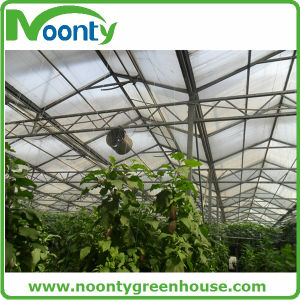 Tomato Hanging Wire for Farm Greenhouse Vegetable accessory pictures & photos