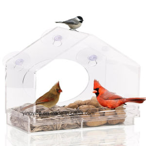 Customized Clear Squirrel Proof Acrylic Window Bird Feeder pictures & photos