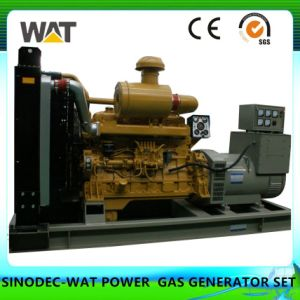 20kw Biogas Generator Set with Ce, ISO, SGS Certificates pictures & photos