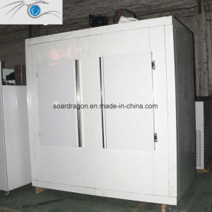 Assemble Ice Bag Storage Freezer pictures & photos