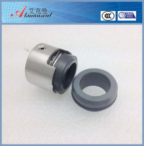 Replacement of Burgmann M7n Pump Mechanical Seal pictures & photos