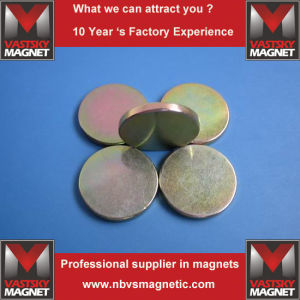 Permanent Neodymium Strong NdFeB Magnet for Audio Speaker Acoustic Device pictures & photos