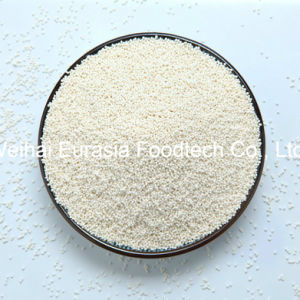 Zinc Bisglycinate Sustained-Release Pellets pictures & photos