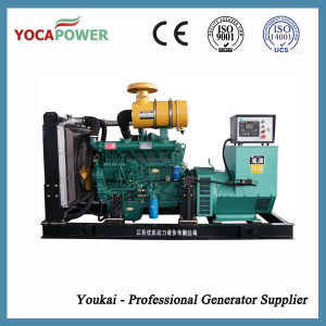 250kVA Power Generation Diesel Generator Set pictures & photos