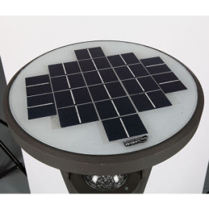 Super Bright 6watts LED Solar Light with Color Changing LEDs pictures & photos