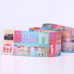 Strong Patterned Dacron/Nylon/Cotton Belt Webbing for Chair pictures & photos