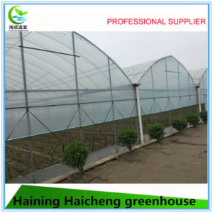 High Quality Film Greenhouse for Vegetable Planting pictures & photos