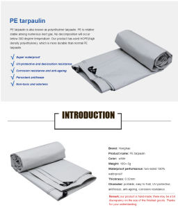 Low Price Durable Outdoor Waterproof PE Tarpaulin for Cover pictures & photos