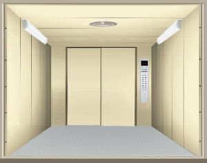 FUJI Large Cargo Lift Elevator with Double Control Box with Standard En81 pictures & photos