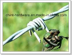 Barbed Wire pictures & photos
