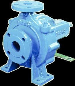 End Suction Volute Pumps pictures & photos
