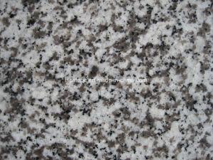 Chinese Granite G439 Granite Flooring Tile pictures & photos