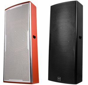 Dual 15′′ Tk25 Stage Monitor Speakers System - Tact pictures & photos
