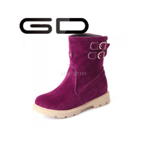 Gd Factory Wholesale Cheap Womens Platform Snow Walking Shoes pictures & photos