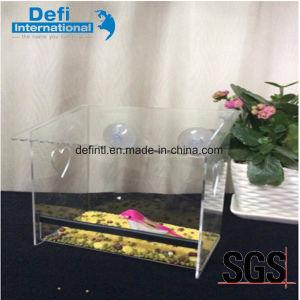 Acrylic Window Bird Feeder with Detachable Tray pictures & photos