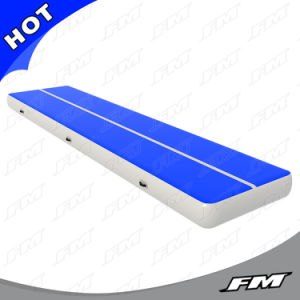 FM 2X15m Blue P3 Dwf Inflatable Gym Mat pictures & photos