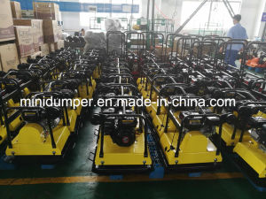 Factory Supply Stone Plate Compactor, Vibrating Plate Compactor for Sale, Diesel Plate Compactor pictures & photos