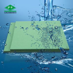 Damp Proof Board 1220mmx2440mmx18mm E2 pictures & photos