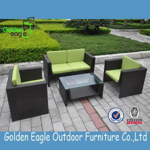 Modern Patio Wicker Rattan Sofa Set/Garden Sofa pictures & photos