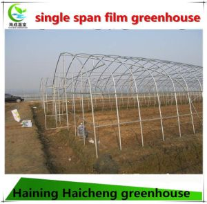 Single Span Plastic Film Greenhouse for Industrial Used pictures & photos