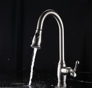 Brushed Nickel Solid Brass Pull out Sprayer Kitchen Sink Faucet pictures & photos